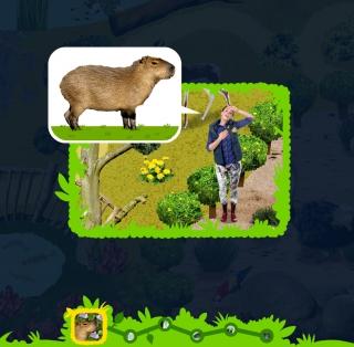 Capibara verhaal met Anna in de Koek en Ei app